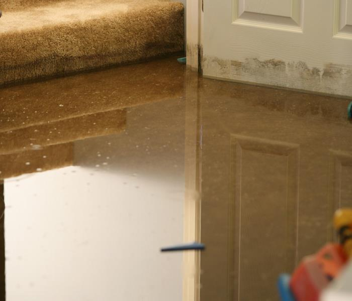 Water Damage About your Franklin County, MO Water Damage