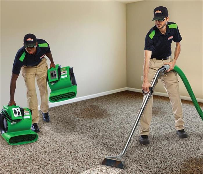 Cleaning Renting Home Carpet Cleaners Could Cause More Issues