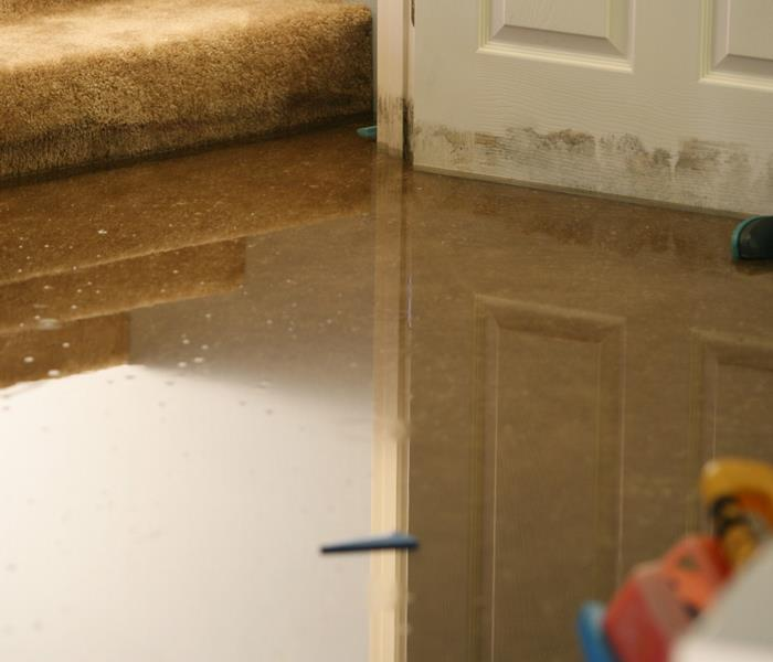 Water Damage Always Call A Water Damage Service For Repairs