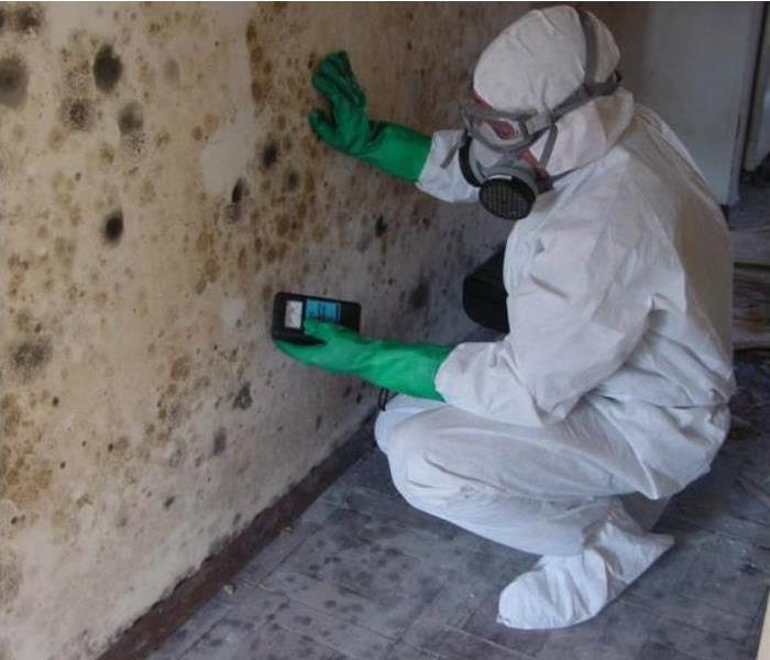 Mold Remediation Why Is Mold And Mildew Such A Big Threat?