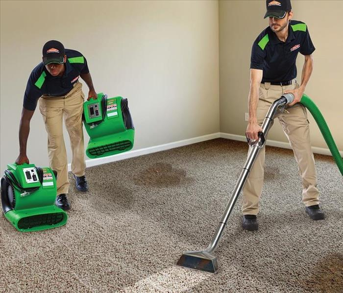 Cleaning Locate Carpet Cleaning Service in Franklin County, MO