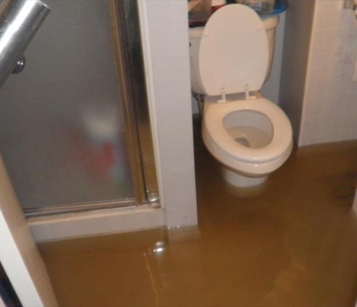 Water Damage What You Should Know About Sewage Cleanup