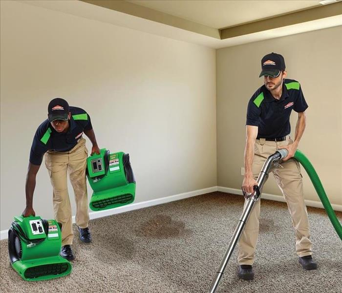 Cleaning Why Should You Use A Professional Carpet Cleaner?