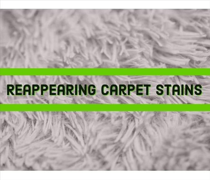 "Image of carpet with ""Reappearing Carpet Stains"""