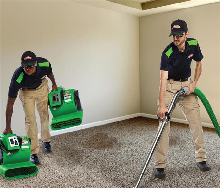 Commercial Why Should You Hire A Professional Carpet Cleaner?
