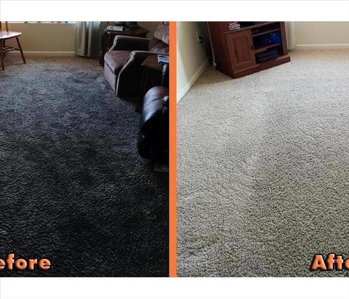 Before & after carpet cleaning photo with dark carpet versus white cleaned carpet.