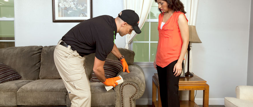 Union, MO carpet upholstery cleaning